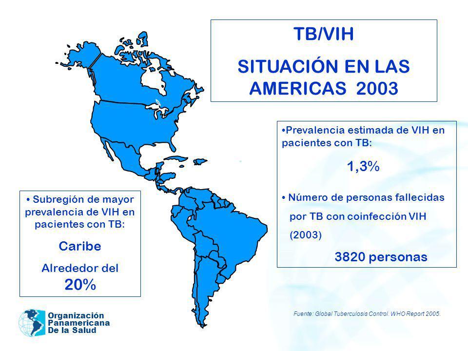 SITUACIÓN EN LAS AMERICAS 2003