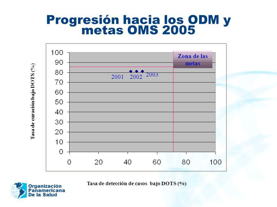 Progresión hacia los ODM y metas OMS 2005