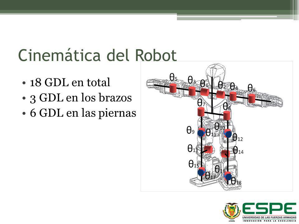 Cinemática del Robot 18 GDL en total 3 GDL en los brazos
