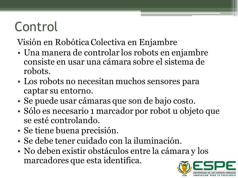 Control Visión en Robótica Colectiva en Enjambre