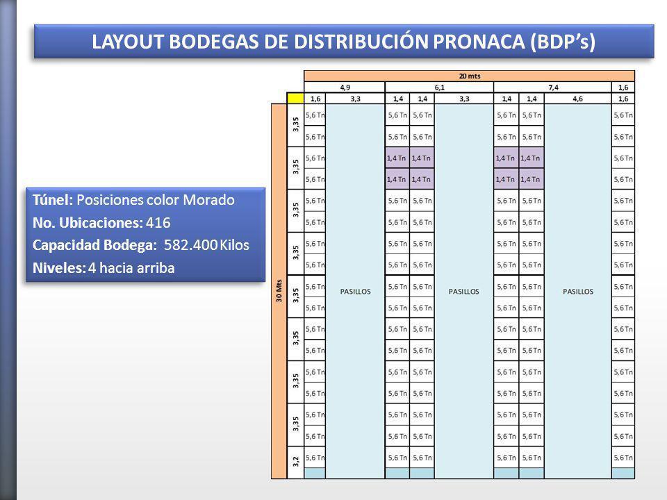 LAYOUT BODEGAS DE DISTRIBUCIÓN PRONACA (BDP's)