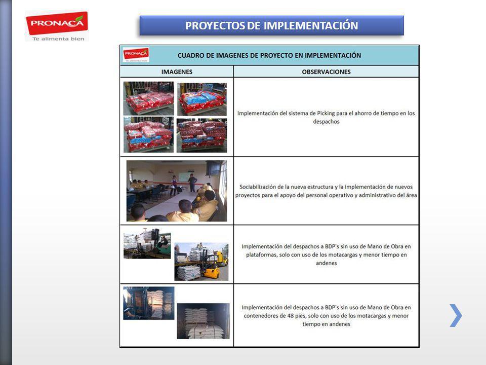 PROYECTOS DE IMPLEMENTACIÓN