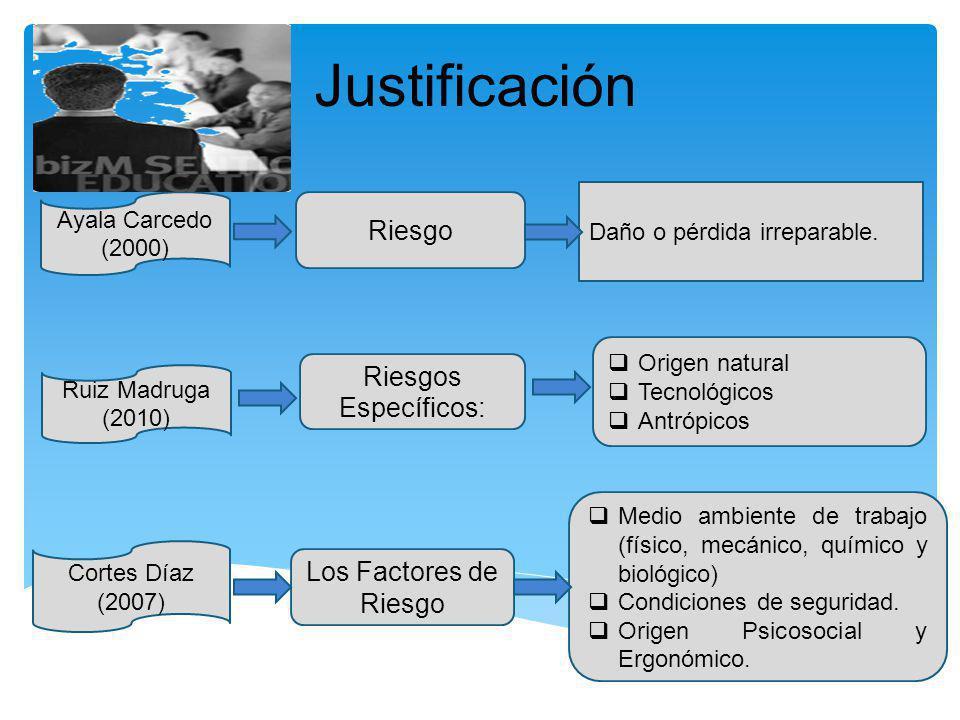 Justificación Riesgo Riesgos Específicos: Los Factores de Riesgo