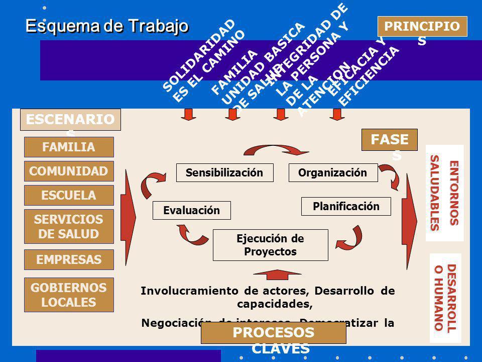 Esquema de Trabajo ESCENARIOS FASES PROCESOS CLAVES