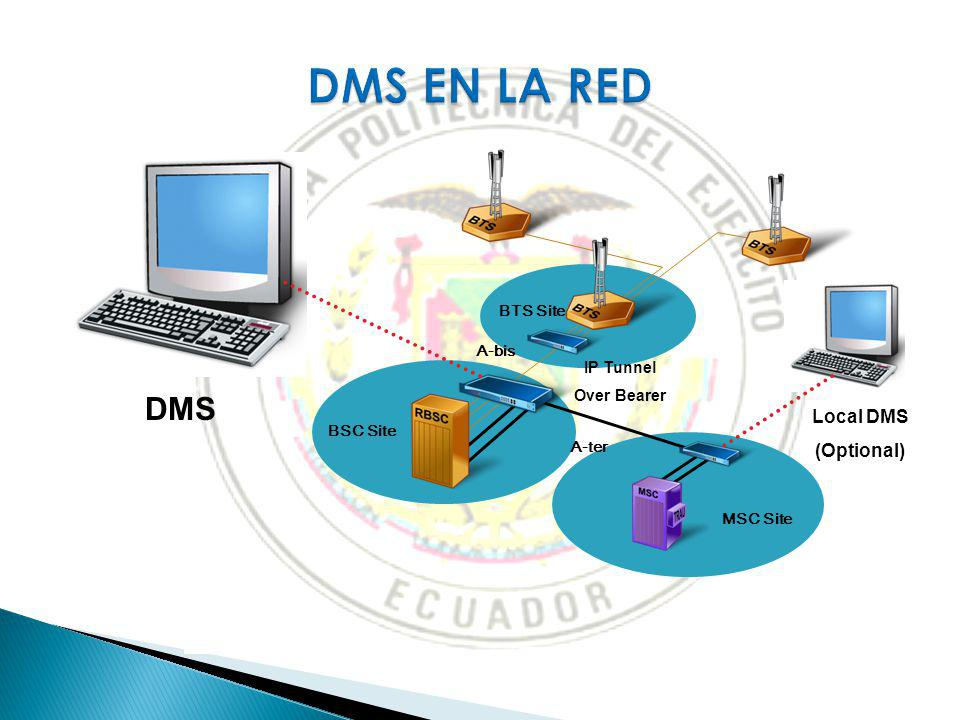 DMS EN LA RED DMS Local DMS (Optional) 1 April 2017