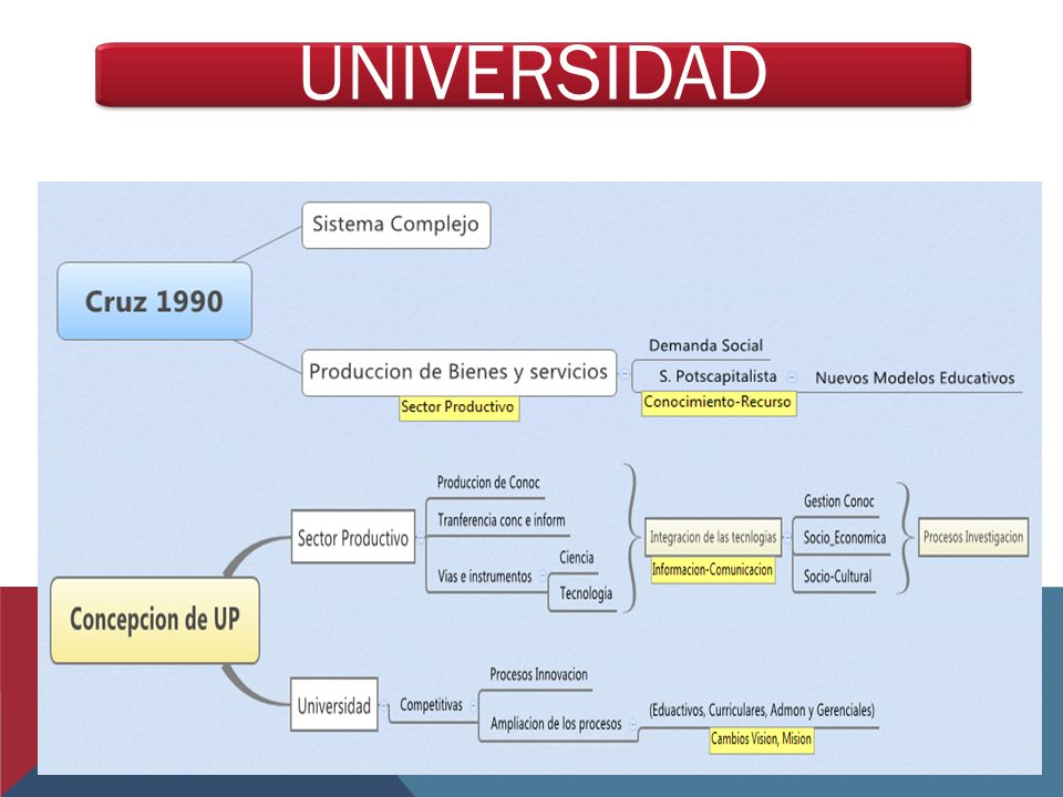 UNIVERSIDAD 19