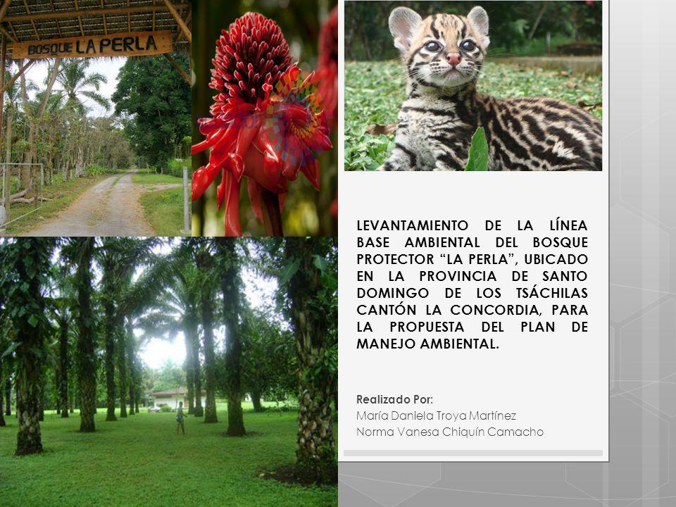 LEVANTAMIENTO DE LA LÍNEA BASE AMBIENTAL DEL BOSQUE PROTECTOR LA PERLA , UBICADO EN LA PROVINCIA DE SANTO DOMINGO DE LOS TSÁCHILAS CANTÓN LA CONCORDIA, PARA LA PROPUESTA DEL PLAN DE MANEJO AMBIENTAL.