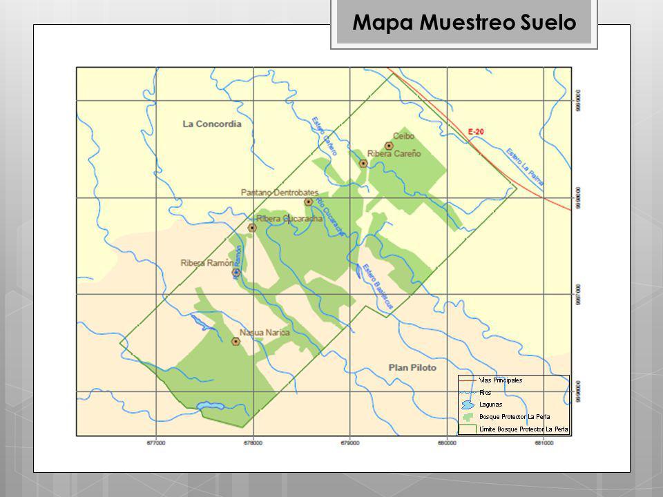 Mapa Muestreo Suelo