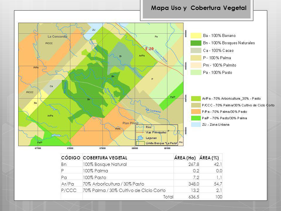 Mapa Uso y Cobertura Vegetal