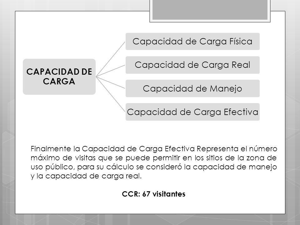 CAPACIDAD DE CARGA Capacidad de Carga Física. Capacidad de Carga Real. Capacidad de Manejo. Capacidad de Carga Efectiva.