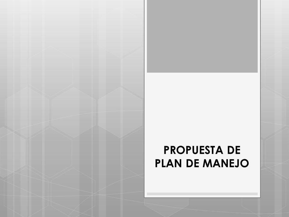 PROPUESTA DE PLAN DE MANEJO