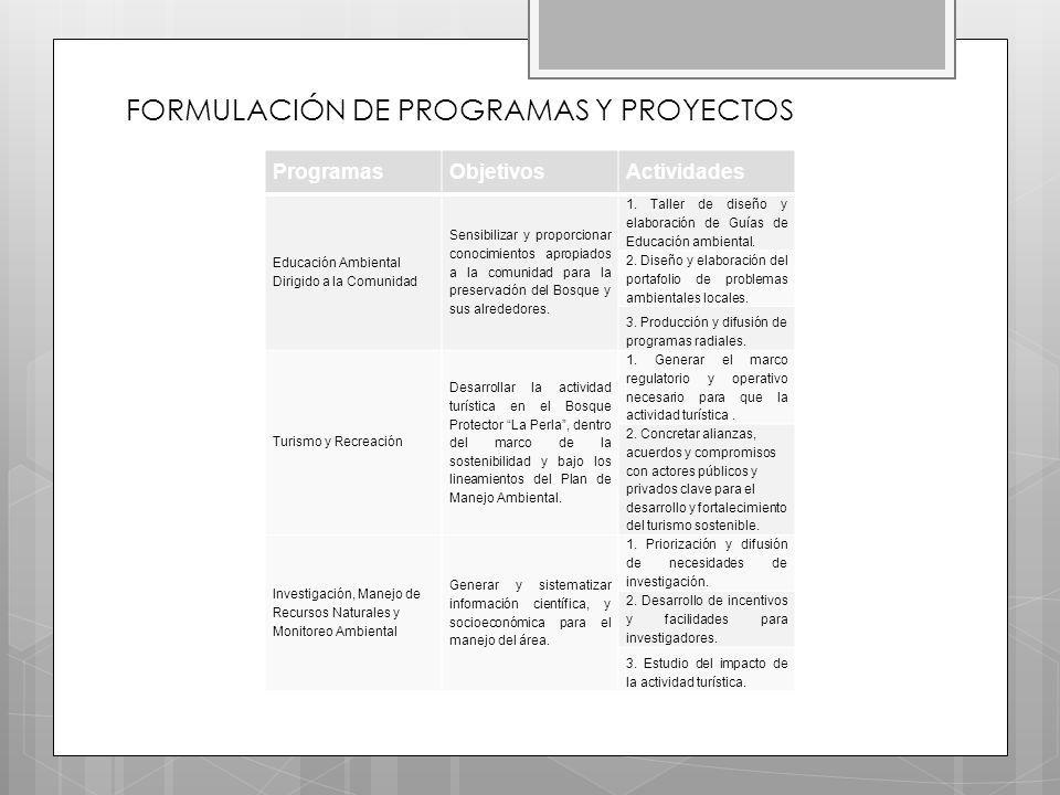 FORMULACIÓN DE PROGRAMAS Y PROYECTOS