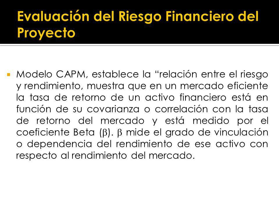 Evaluación del Riesgo Financiero del Proyecto