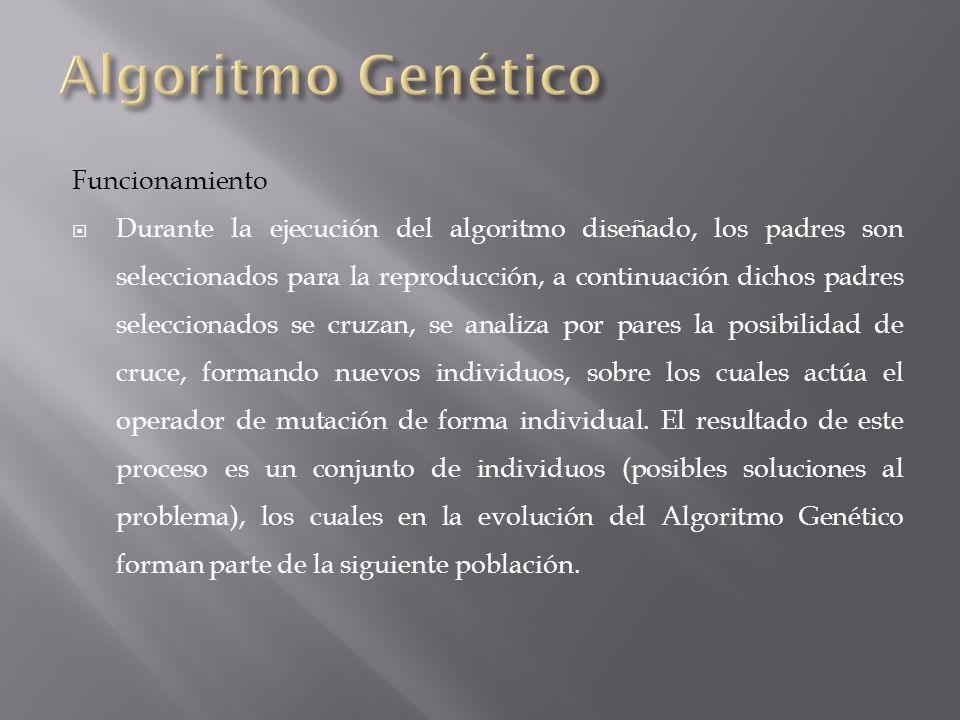 Algoritmo Genético Funcionamiento