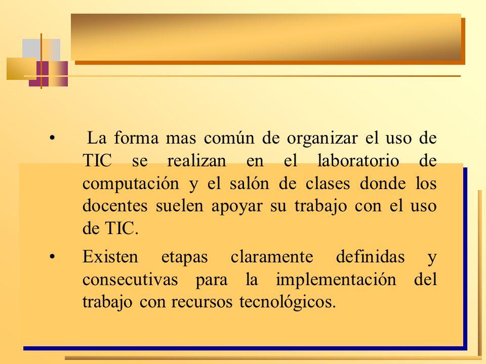 La forma mas común de organizar el uso de TIC se realizan en el laboratorio de computación y el salón de clases donde los docentes suelen apoyar su trabajo con el uso de TIC.