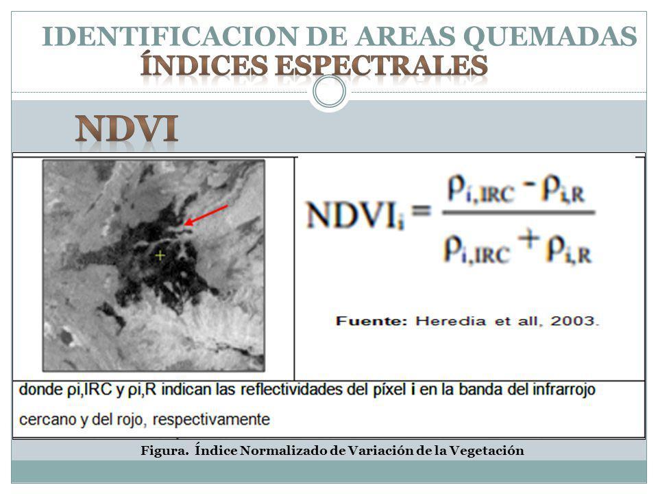 IDENTIFICACION DE AREAS QUEMADAS