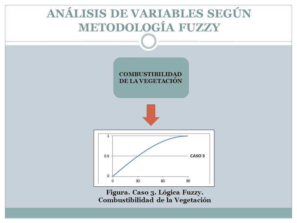ANÁLISIS DE VARIABLES SEGÚN METODOLOGÍA FUZZY