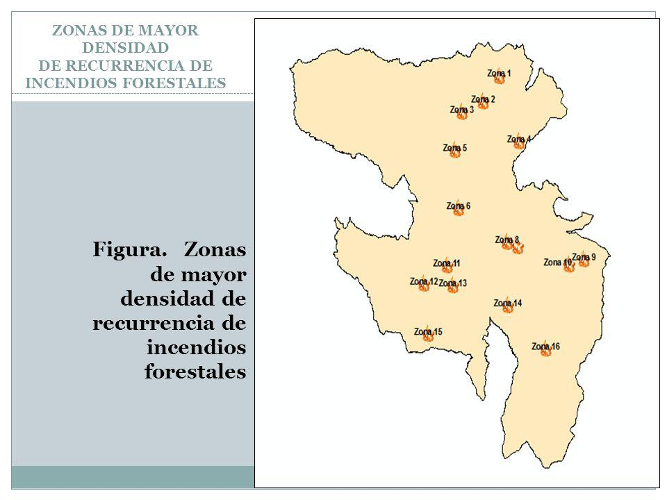 ZONAS DE MAYOR DENSIDAD DE RECURRENCIA DE INCENDIOS FORESTALES