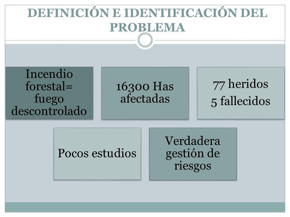 DEFINICIÓN E IDENTIFICACIÓN DEL PROBLEMA