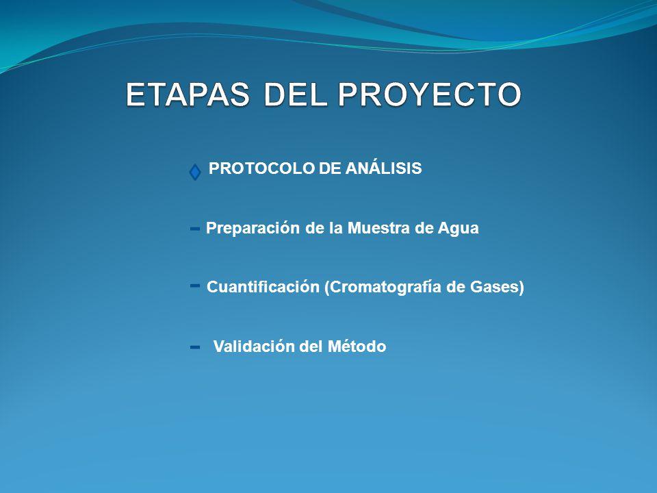 ETAPAS DEL PROYECTO PROTOCOLO DE ANÁLISIS
