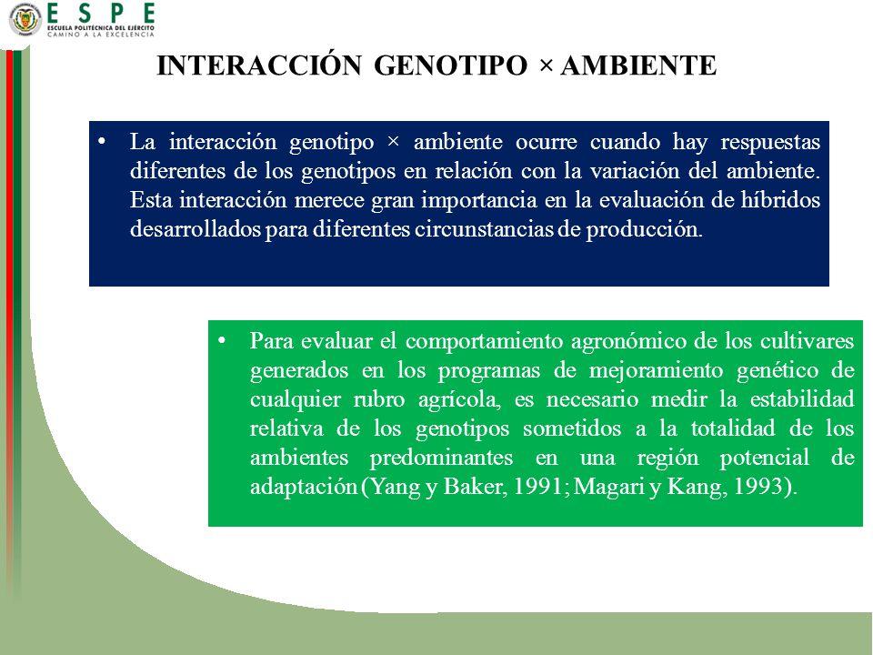 INTERACCIÓN GENOTIPO × AMBIENTE
