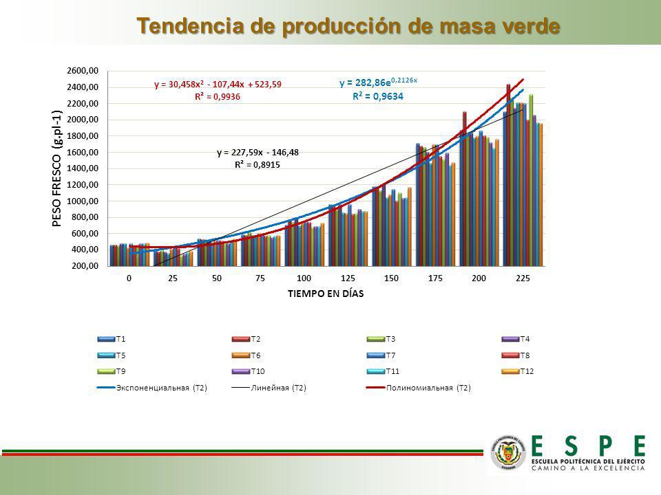 Tendencia de producción de masa verde