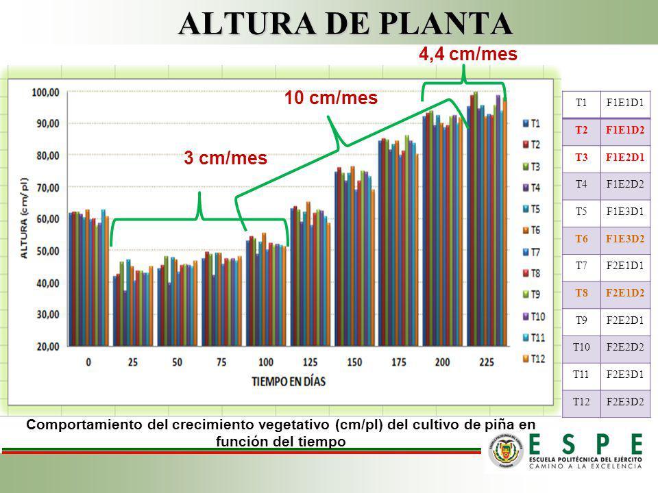 ALTURA DE PLANTA 4,4 cm/mes 10 cm/mes 3 cm/mes