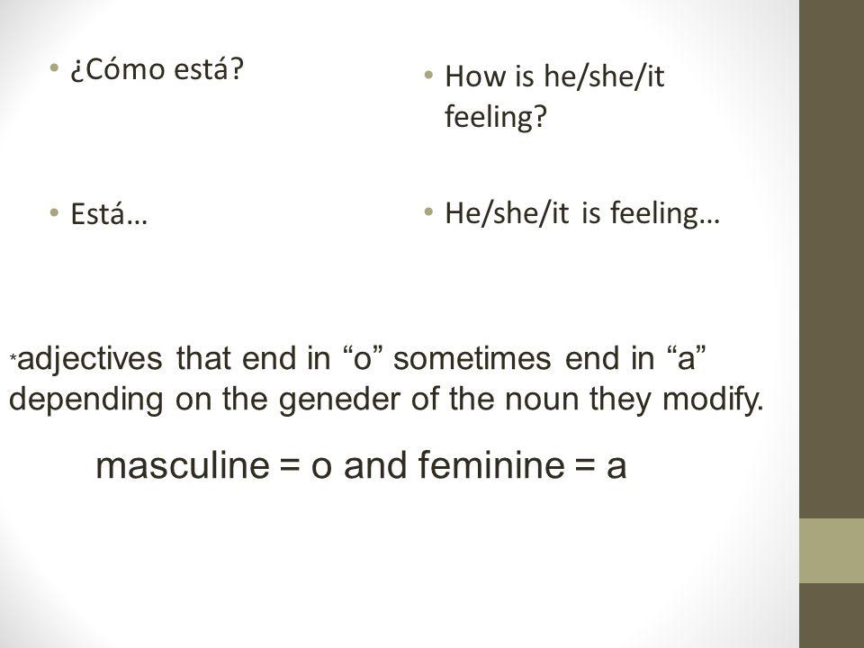 masculine = o and feminine = a