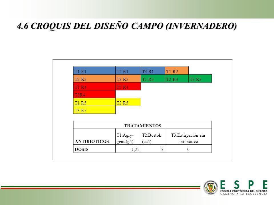 4.6 CROQUIS DEL DISEÑO CAMPO (INVERNADERO)