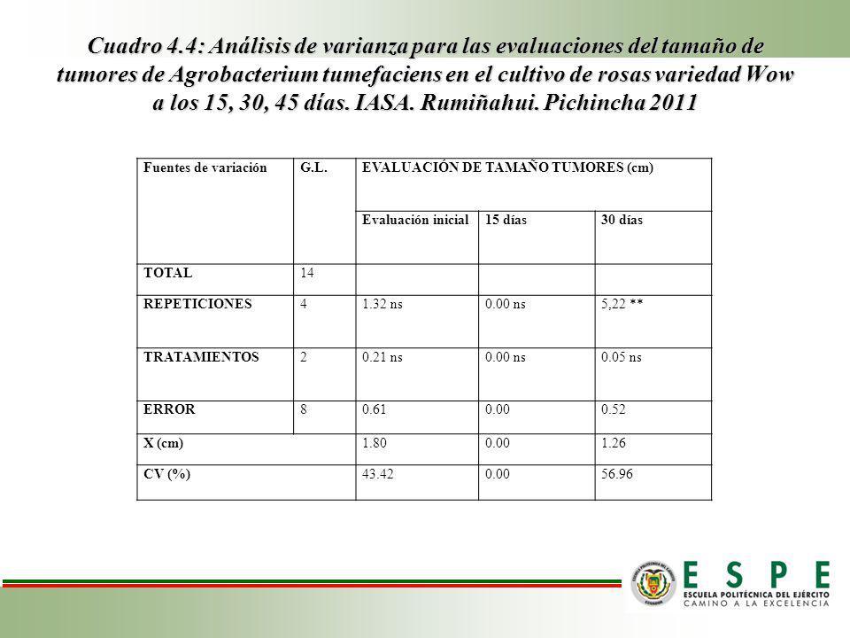 Cuadro 4.4: Análisis de varianza para las evaluaciones del tamaño de tumores de Agrobacterium tumefaciens en el cultivo de rosas variedad Wow a los 15, 30, 45 días. IASA. Rumiñahui. Pichincha 2011