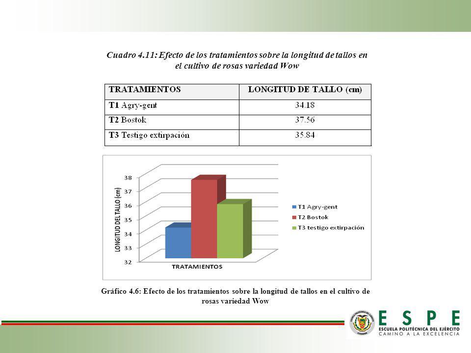 Cuadro 4.11: Efecto de los tratamientos sobre la longitud de tallos en el cultivo de rosas variedad Wow