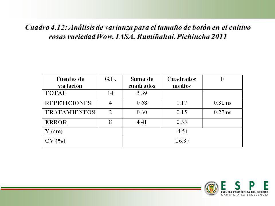 Cuadro 4.12: Análisis de varianza para el tamaño de botón en el cultivo rosas variedad Wow.