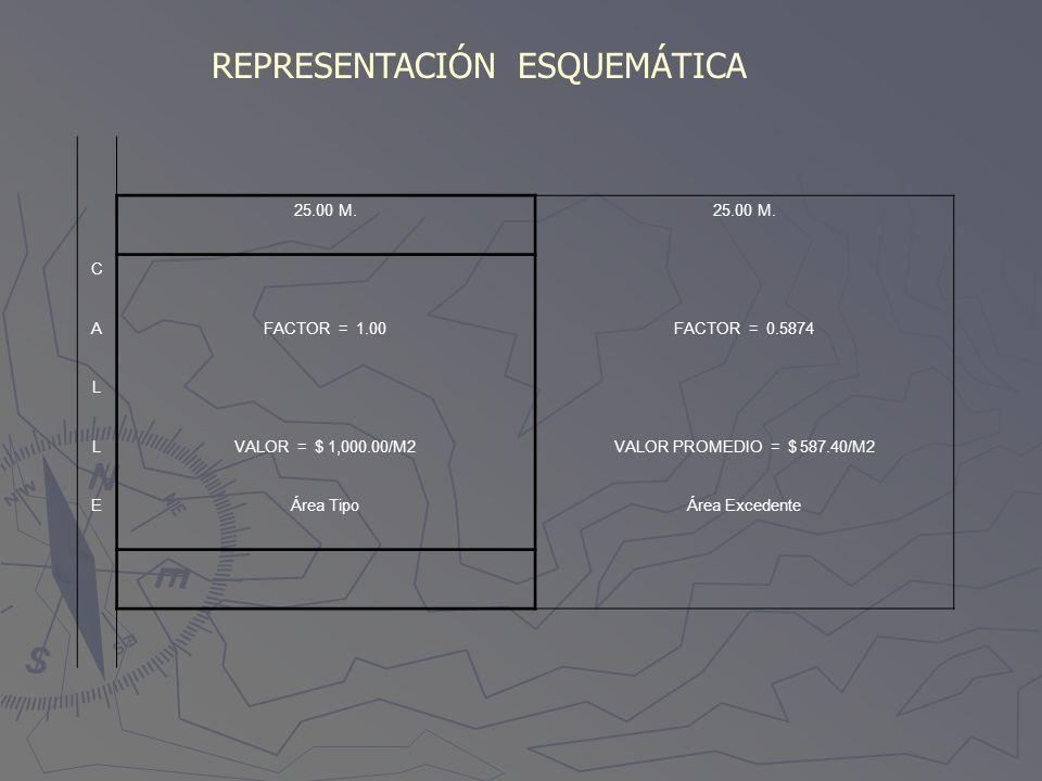 REPRESENTACIÓN ESQUEMÁTICA