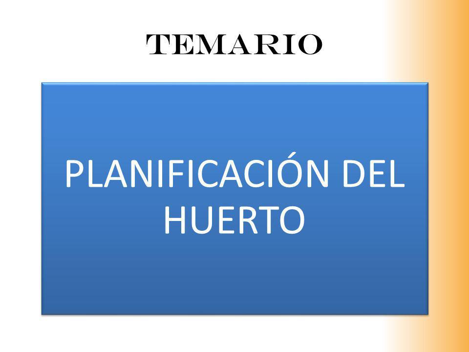 PLANIFICACIÓN DEL HUERTO