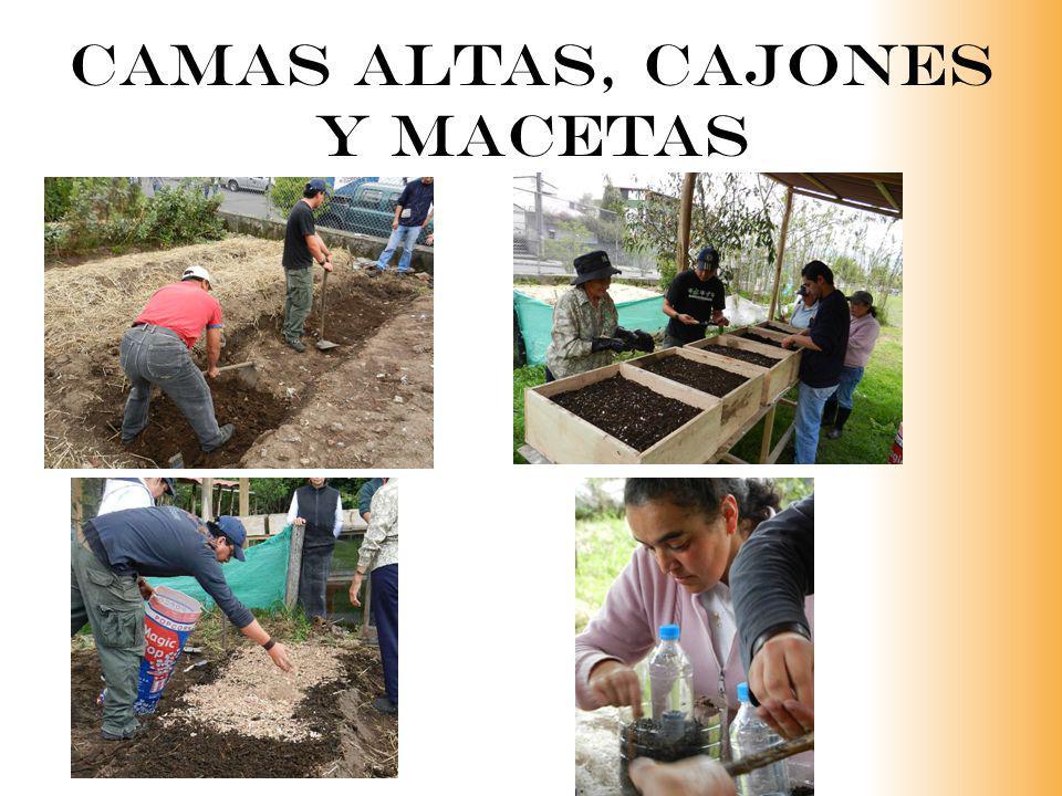 CAMAS ALTAS, CAJONES Y MACETAS