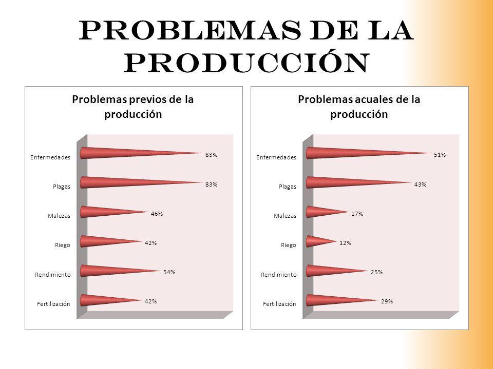 Problemas de la producción