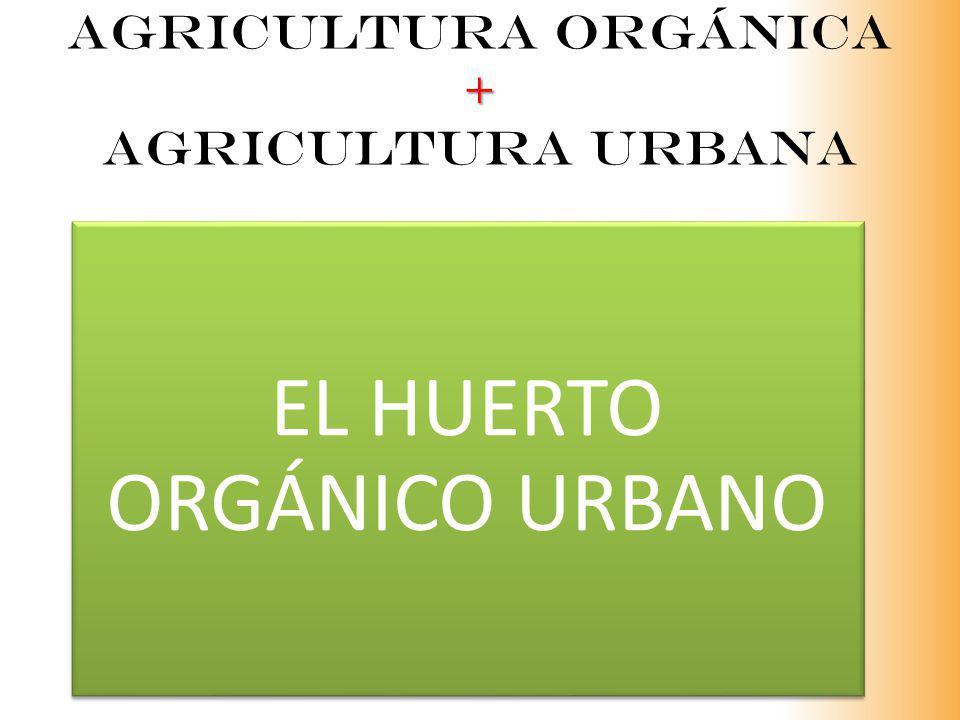 Agricultura orgánica + agricultura urbana