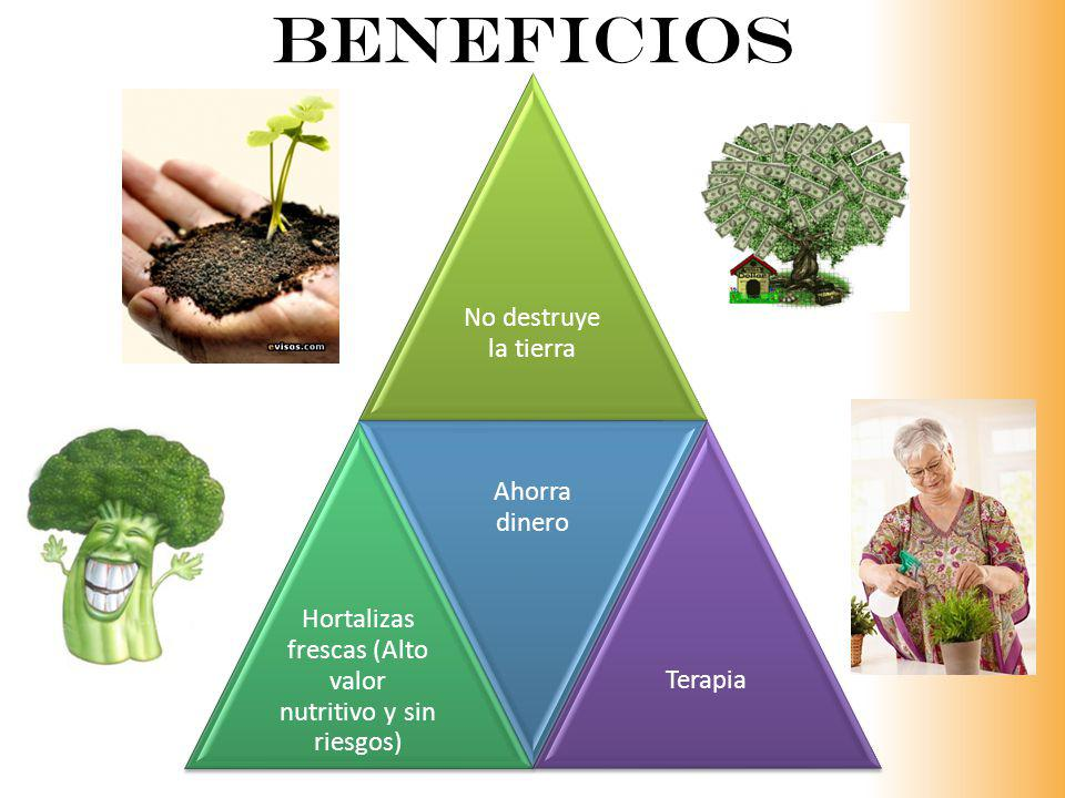 Hortalizas frescas (Alto valor nutritivo y sin riesgos)