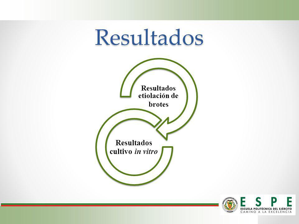 Resultados etiolación de brotes Resultados cultivo in vitro
