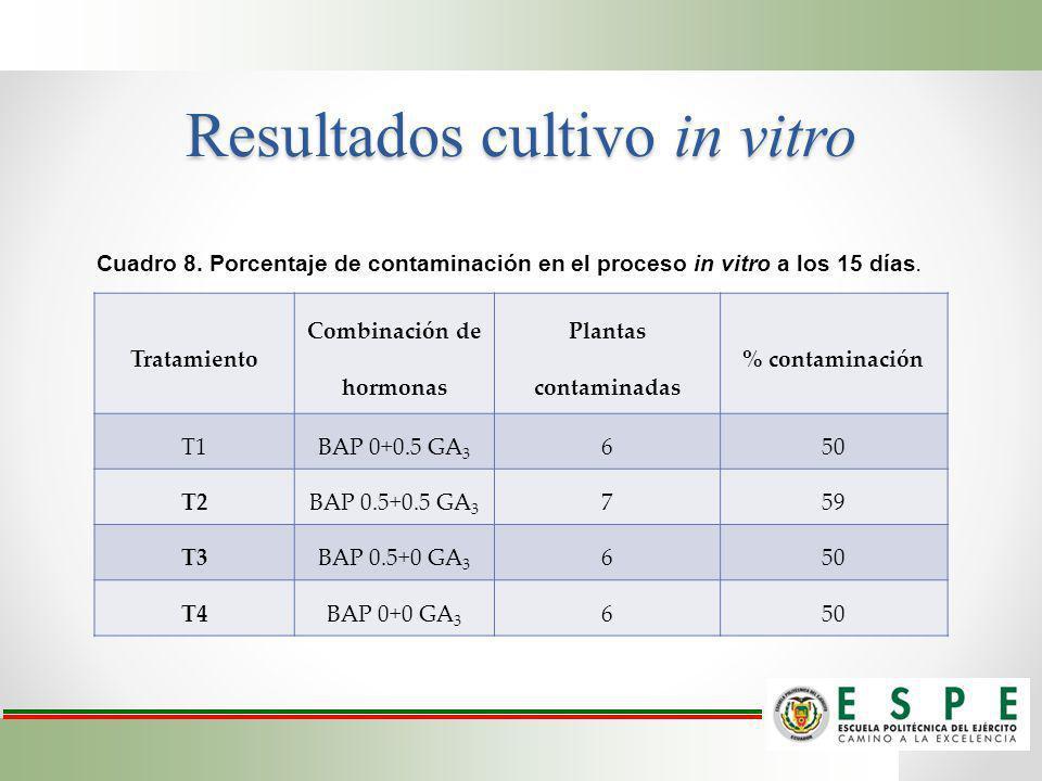 Resultados cultivo in vitro