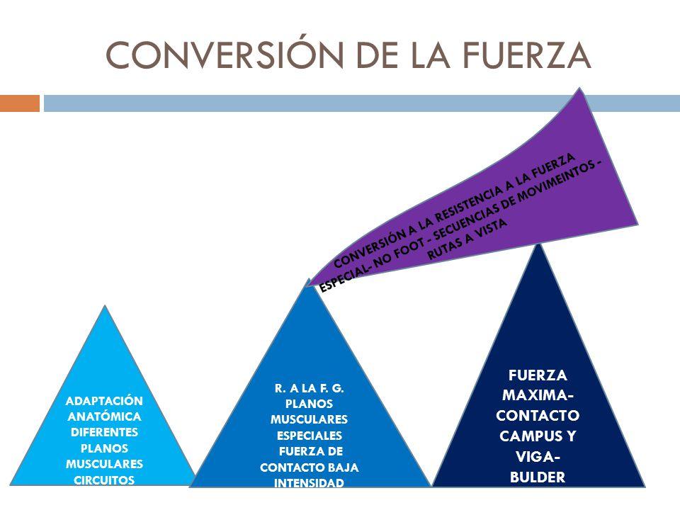 CONVERSIÓN DE LA FUERZA