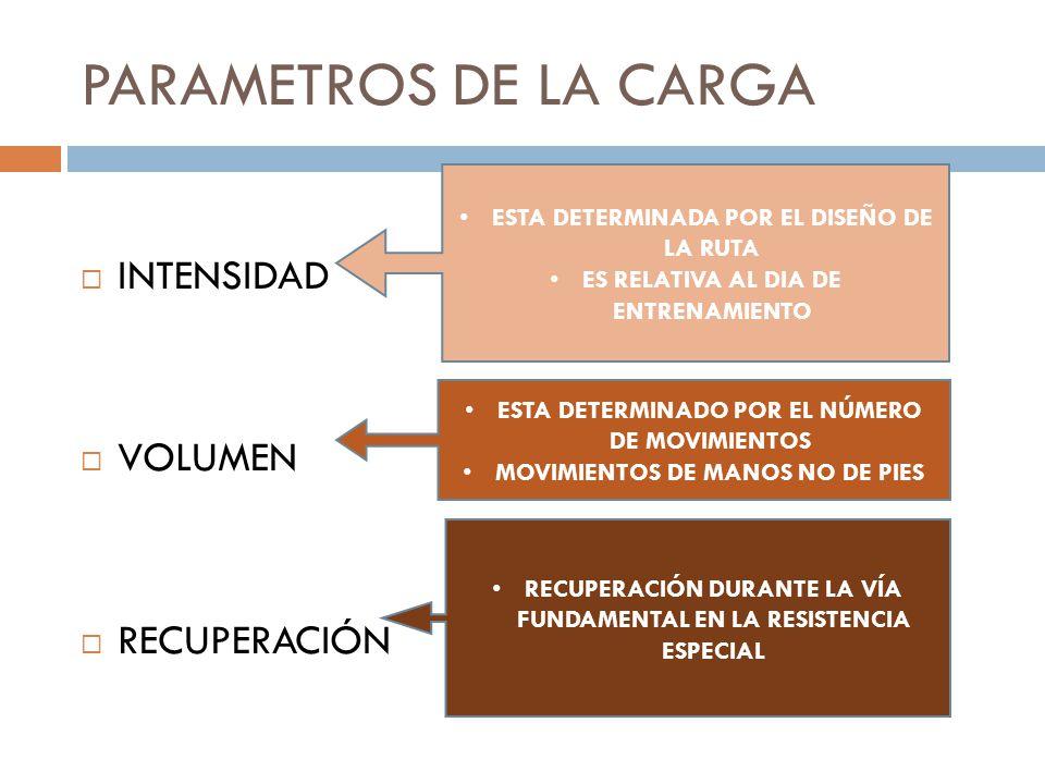 PARAMETROS DE LA CARGA INTENSIDAD VOLUMEN RECUPERACIÓN