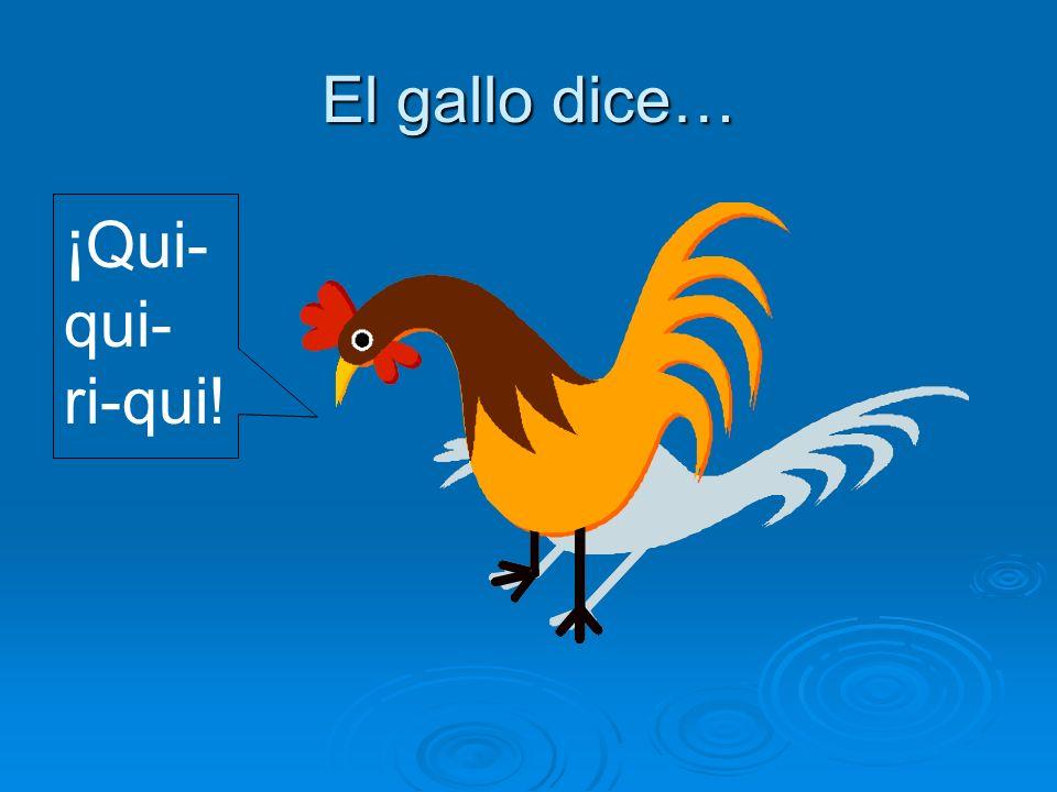 El gallo dice… ¡Qui-qui-ri-qui!