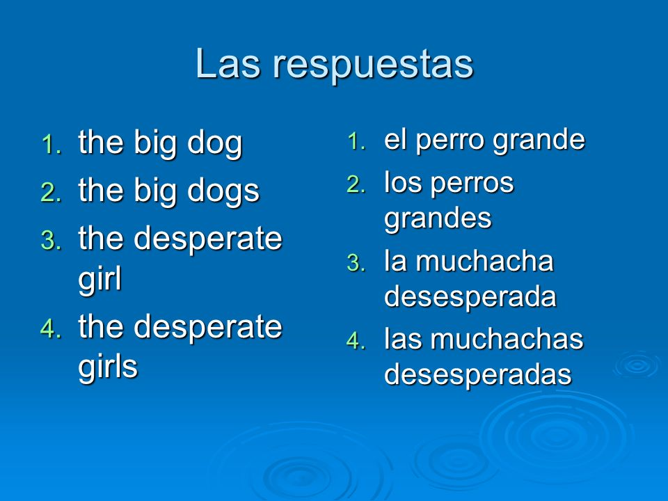 Las respuestas the big dog the big dogs the desperate girl