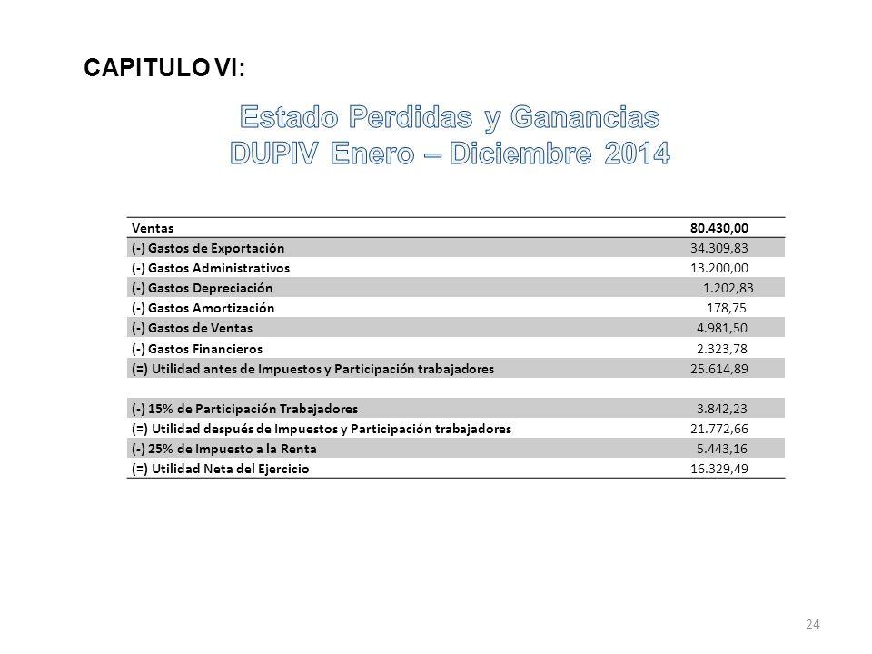 Estado Perdidas y Ganancias DUPIV Enero – Diciembre 2014