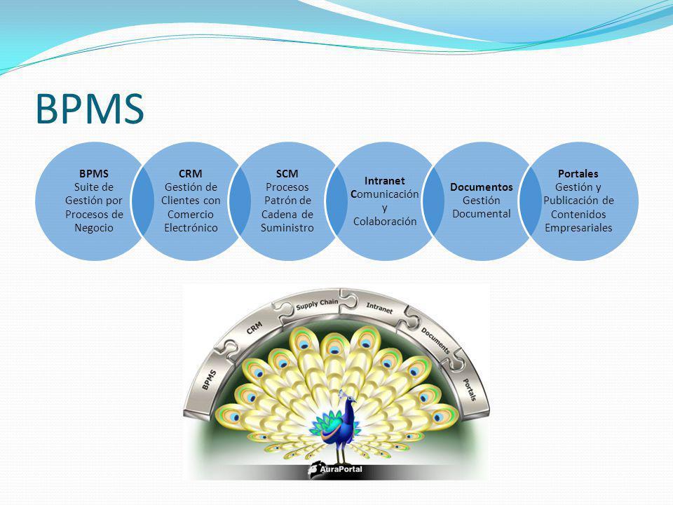BPMS BPMS Suite de Gestión por Procesos de Negocio