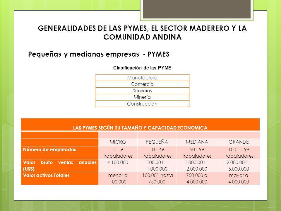 GENERALIDADES DE LAS PYMES, EL SECTOR MADERERO Y LA COMUNIDAD ANDINA