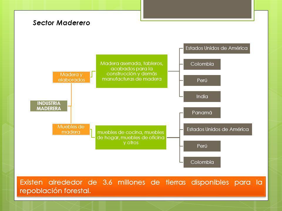 Los productos de la industria maderera se agrupan en: