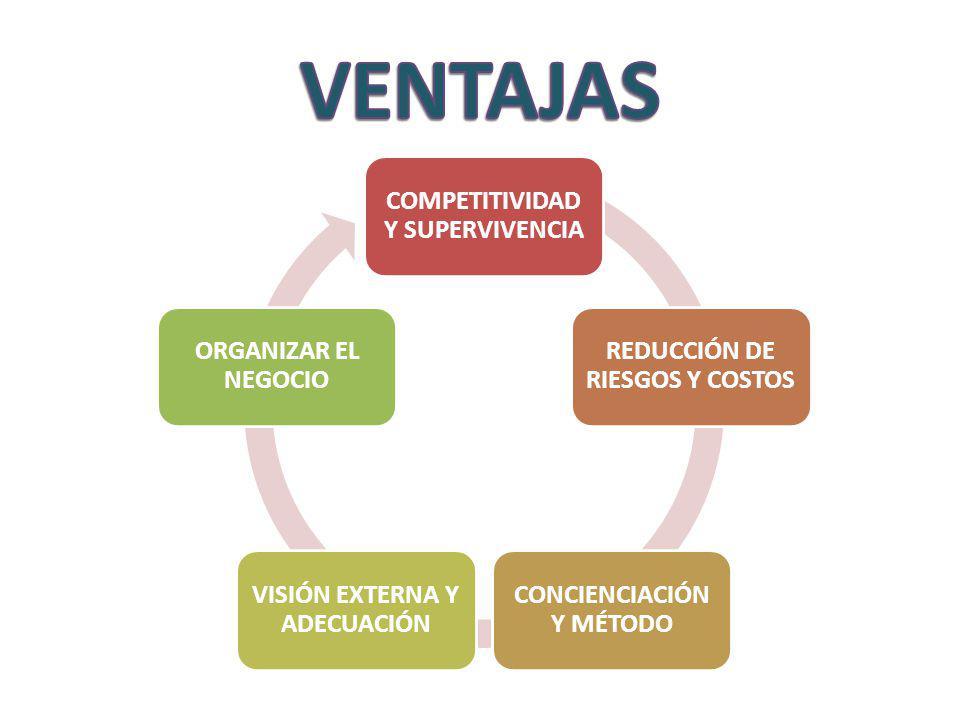 VENTAJAS COMPETITIVIDAD Y SUPERVIVENCIA REDUCCIÓN DE RIESGOS Y COSTOS
