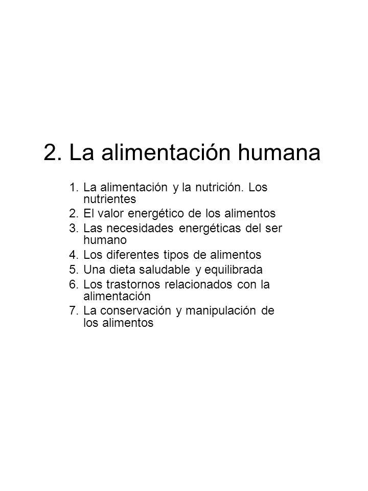 2. La alimentación humana